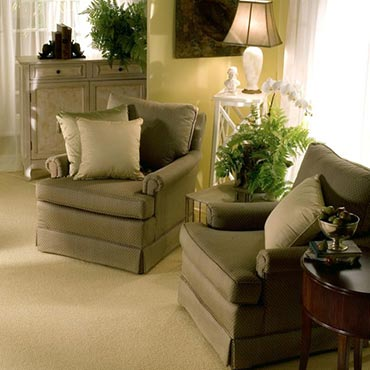 Helios Carpet | Woodinville, WA