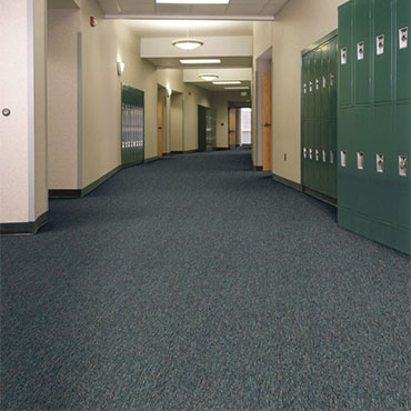 Philadelphia Commercial Carpet | Woodinville, WA